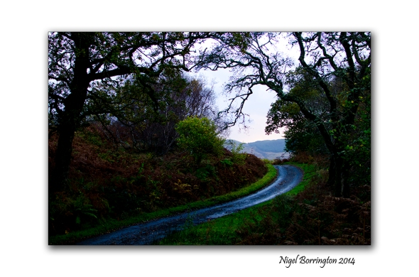 A Walk along Lock Melfort 8