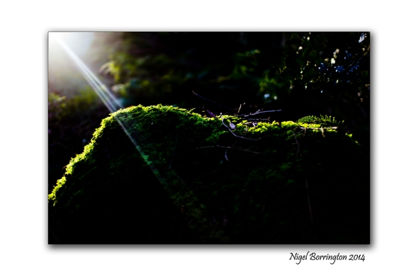 Finding the light 01