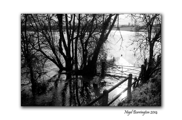 River Barrow KIlkenny in flood  Feb 2014 3