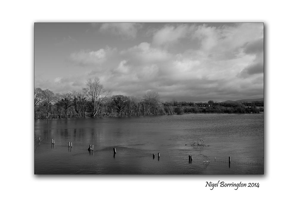 River Barrow KIlkenny in flood  Feb 2014 6
