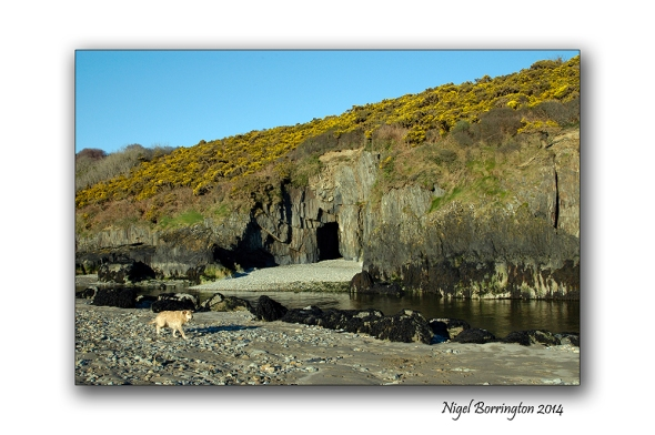 Stradbally Cave 1