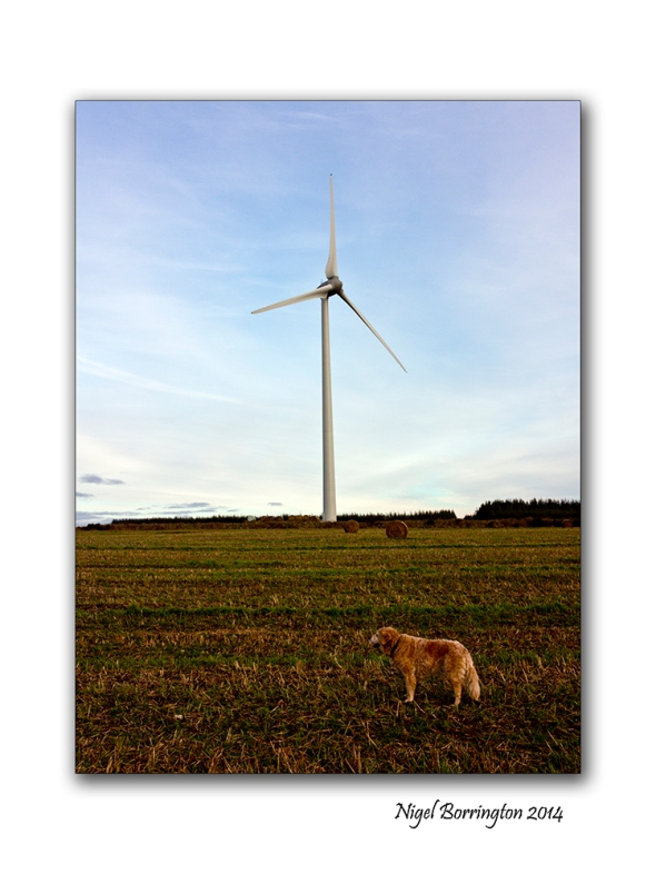 Ballymartin windfarm 04