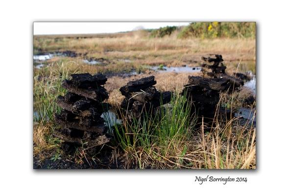 Irish bogs 1