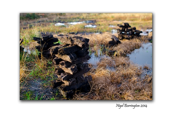Irish bogs 2