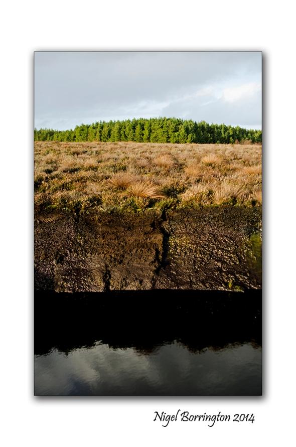Irish bogs 5