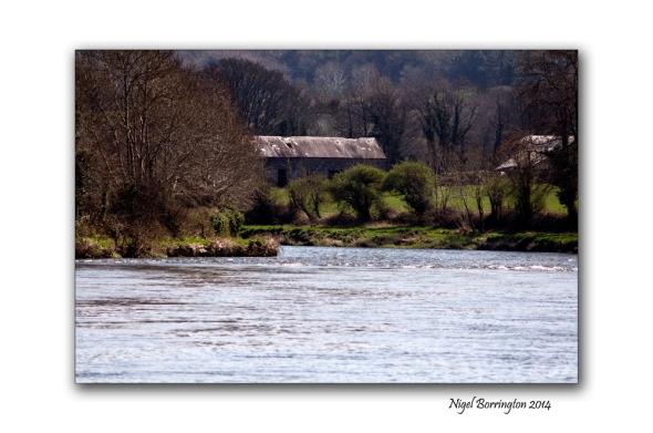 river suir 4