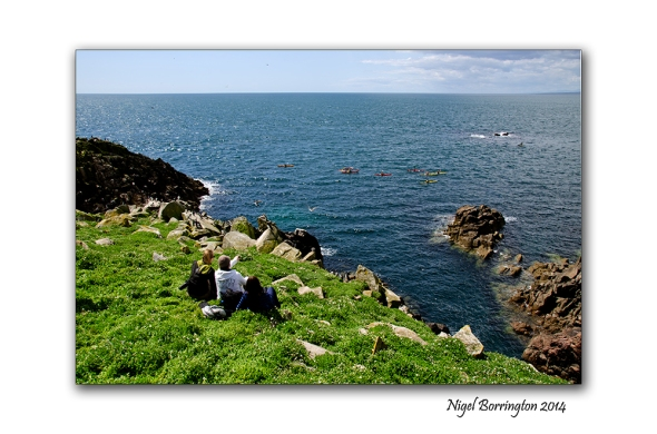 saltees islands 001