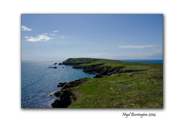saltees islands 002