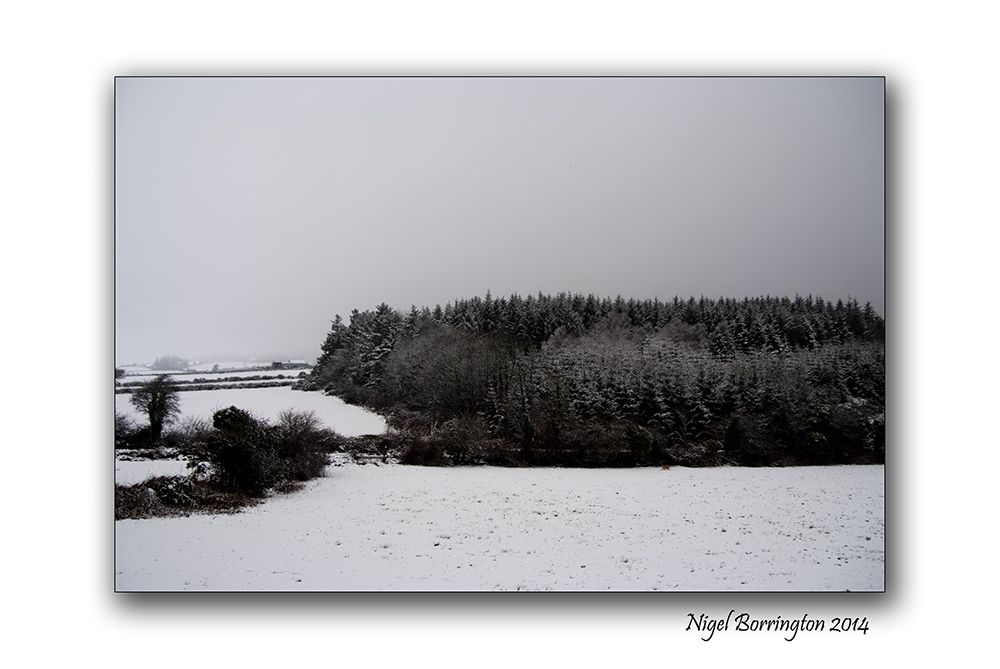robert frost snow