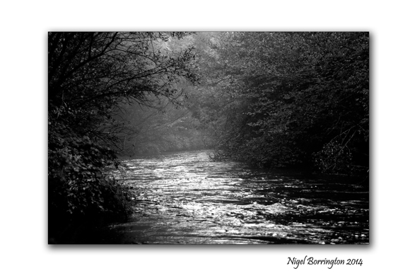 The Path by the Misty River 1