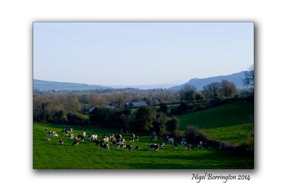 Easter Saturday in KIlkenny 01