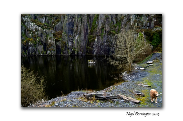Kilkenny Slate Quarries 7