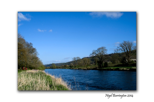 River suir boats 4