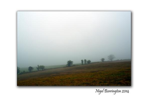 A Misty Day 1