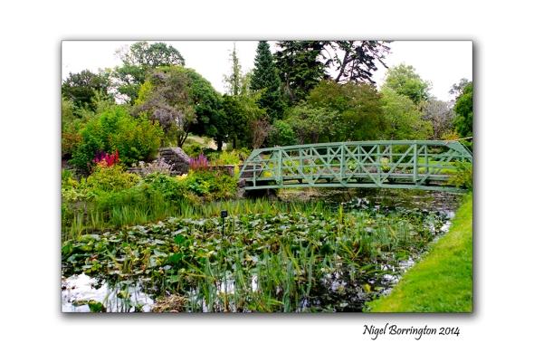 Dublin National Botanic Gardens 10