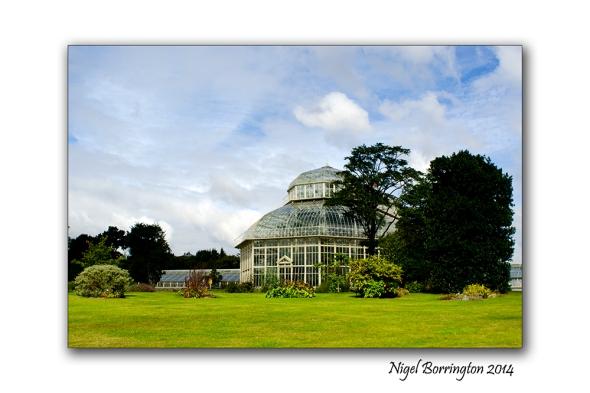 Dublin National Botanic Gardens 11
