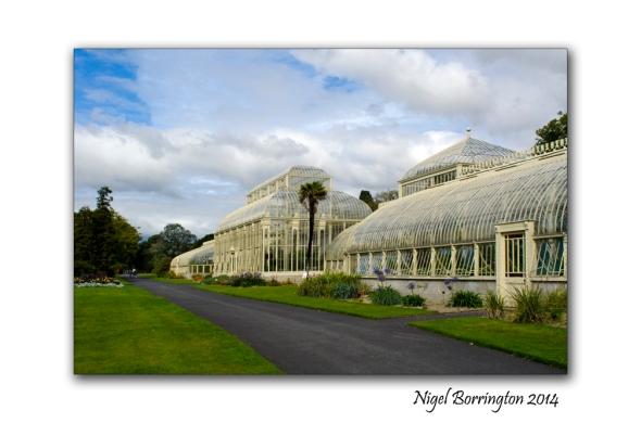 Dublin National Botanic Gardens 2
