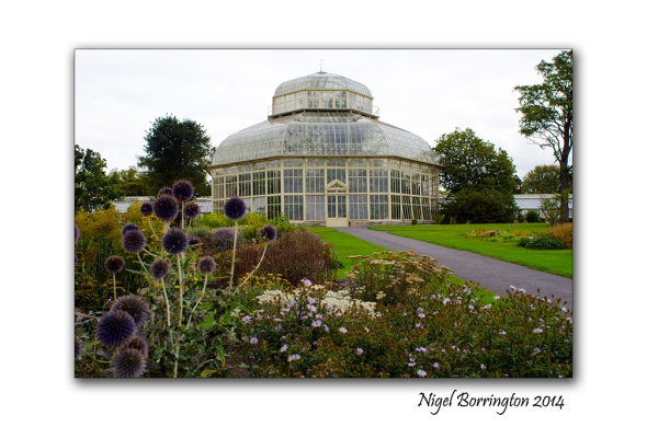 Dublin National Botanic Gardens 4