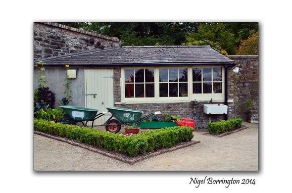 Dublin National Botanic Gardens 9