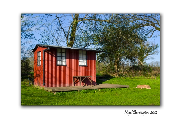 Hut beside the river suir 1