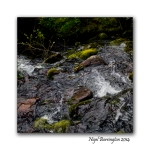 The River falls