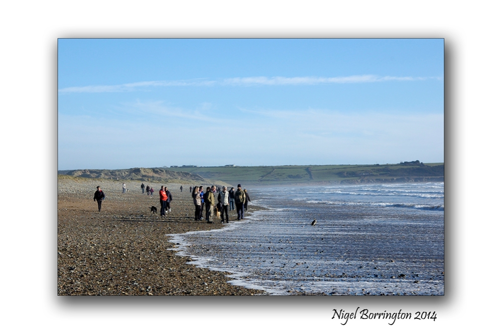 A beach walk at tramor waterford