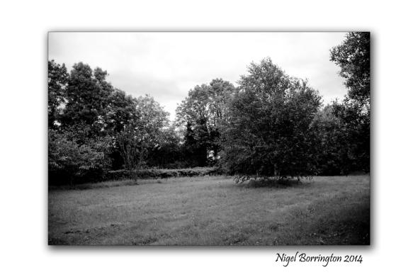 Callan Cherryfields Graveyard _0002
