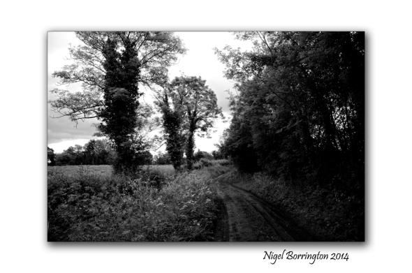 Callan Cherryfields Graveyard _0006