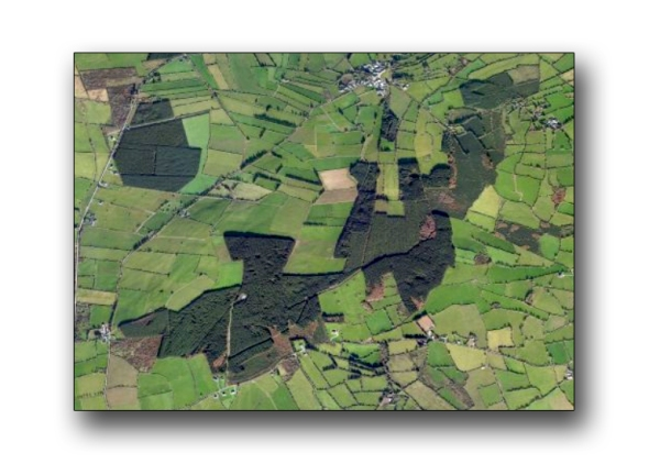 South Kilkenny. Woodlands
