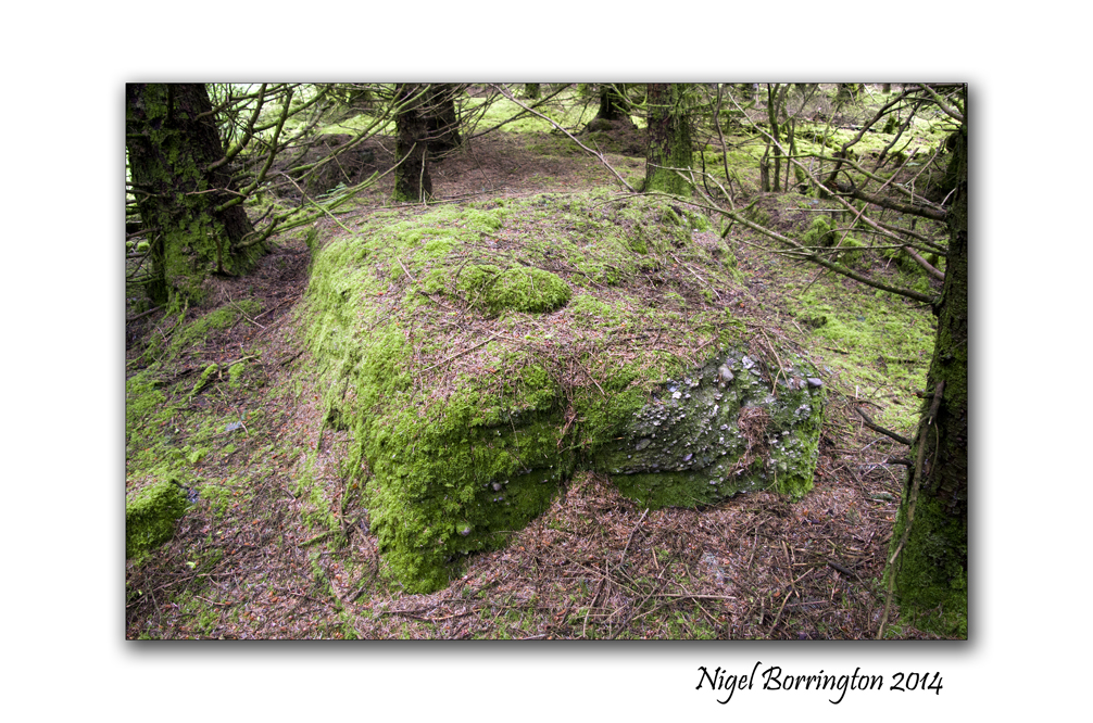 Graves and cap  stones 2