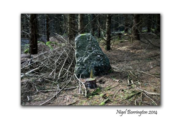 Standing stones 5