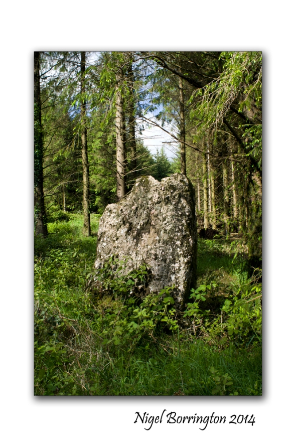Standing stones 6