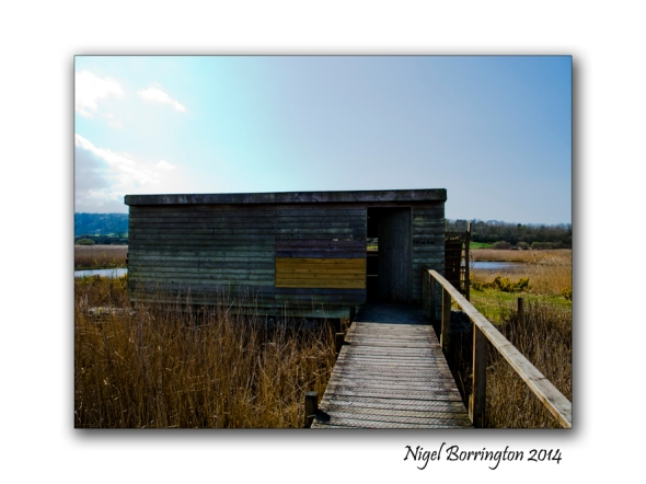 Teifi Marshes Wildlife reserve 10