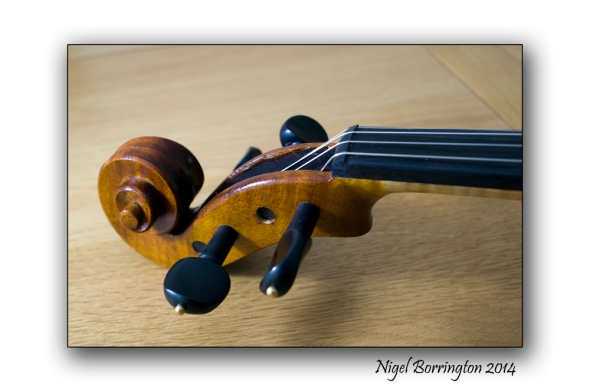 Violin 7