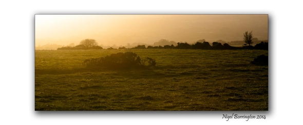 Evening Light across the fields, County Kilkenny Landscape photography : Nigel Borrington