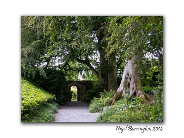 Altamont Gardens 11