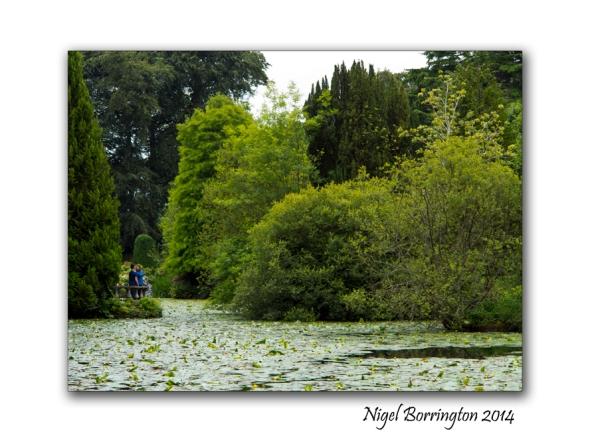 Altamont Gardens 9