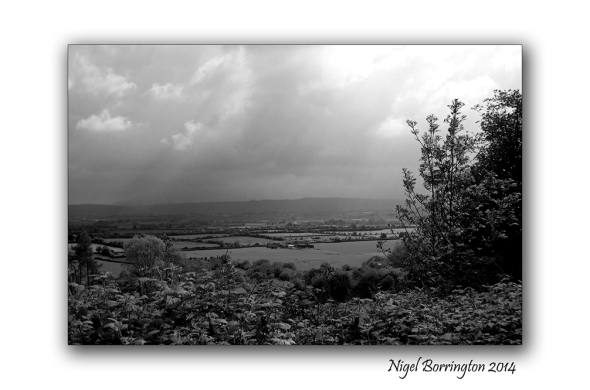 Black and white landscape 3
