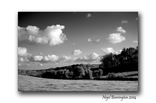 Black and white landscape 6