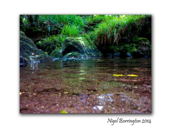 Down in the rocky river 2