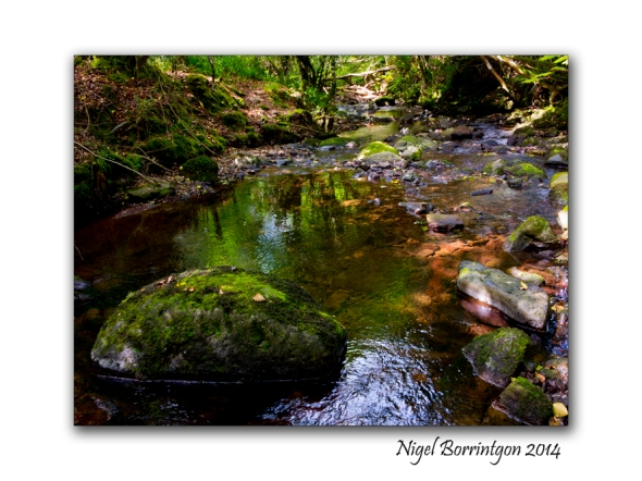 Down in the rocky river 3