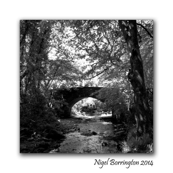 Landscape Photography Square format  6