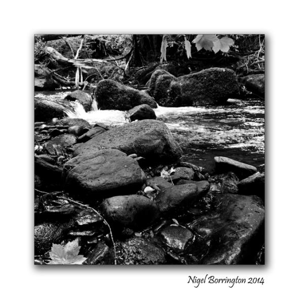 Landscape Photography Square format  8