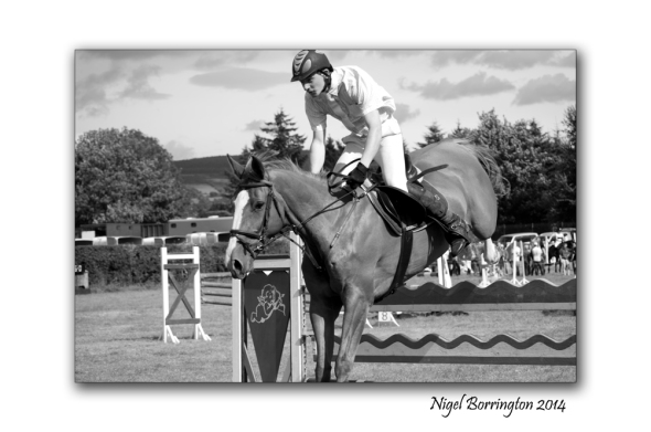 Over the Jump, Iverk Show, county KIlkenny Phorography : Nigel Borrington
