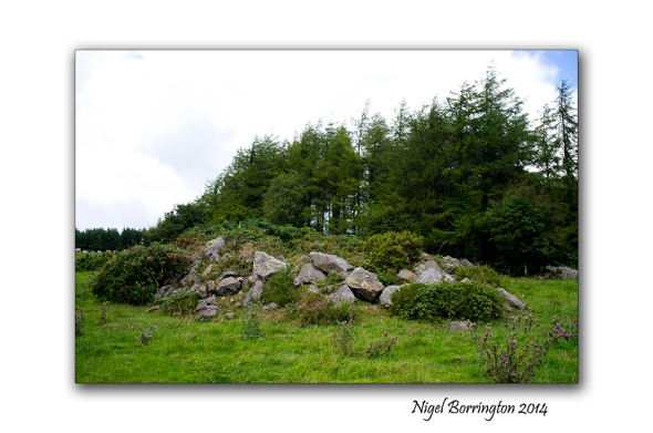 Kilkenny court tombs 1