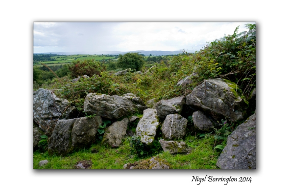 Kilkenny court tombs 2