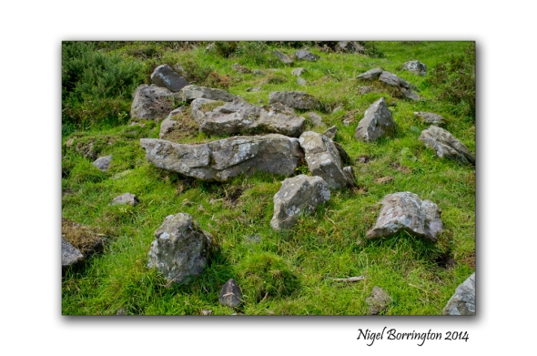 Kilkenny court tombs 3