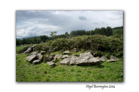 Kilkenny court tombs 5