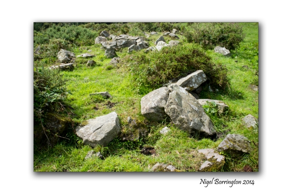 Kilkenny court tombs 7