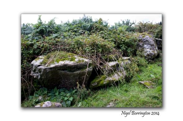 Kilkenny court tombs 8